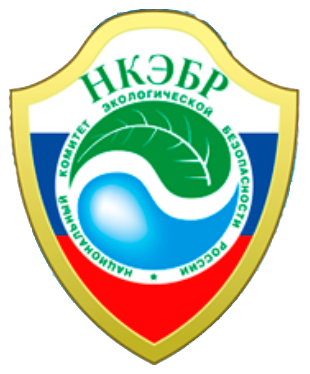 National Committee for Environmental safety of Russia